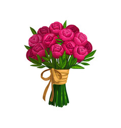 Peonies or roses bouquet bunch flowers vector