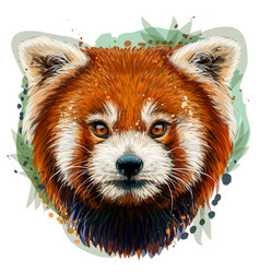 red panda graphic color hand-drawn portrait vector image