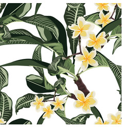 tropical floral summer seamless pattern background vector image