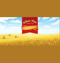 wheat farm poster background vector image