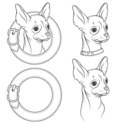 a set drawing chihuahua in collar vector image
