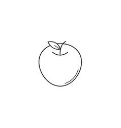 Apple line icon healthy fruit graphics vector