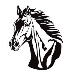 Decorative horse 8 vector