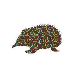 Echidna mammal color silhouette animal vector