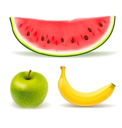Fresh fruit set on white background vector