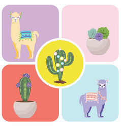 Llama and alpaca greetings vector