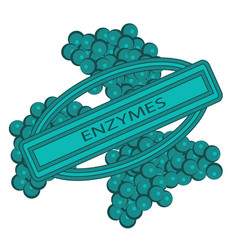 shape of enzymes cells vector image