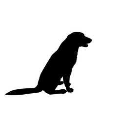 silhouette of a dog on a white vector image