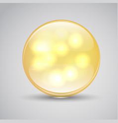 vitamin a a capsule pills vector image