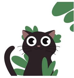 black cat kitten flat eps10 vector image