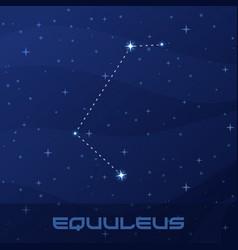 constellation equuleus little horse vector image