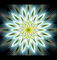 Fantasy flower mandala closeup in fractal vector
