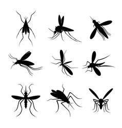 Set mosquito logo design mosquito design vector