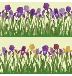 Flowers iris set seamless vector