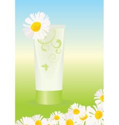 chamomile cream vector image