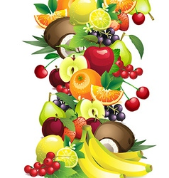 different fruits with leaves and flowers vector image vector image