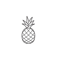 pineapple and ananas line icon healthy fruit vector image