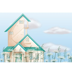 A big house vector image