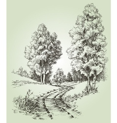 A path in the forest vector