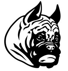 Boxer head black white vector