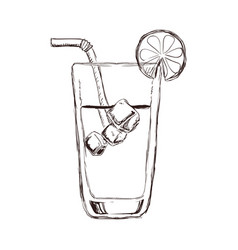delicious cocktail drink vector image
