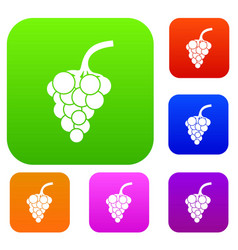grape branch set collection vector image