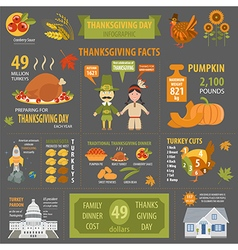 Thanksgiving day interesting facts in infographic vector image