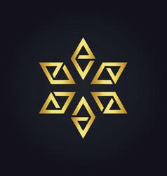 star prism gold logo vector image vector image