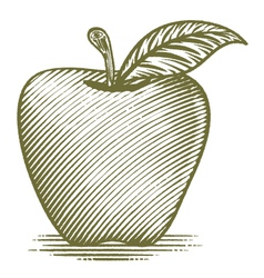 Woodcut Ripe Apple vector image vector image