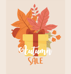 autumn sale wrapped gift maple leaves acorn vector image