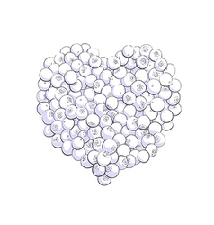 Blueberry heart shape vector
