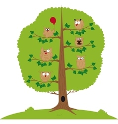 Funny owls sitting in a tree vector image