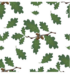 Green branches oak with acorns and leaves vector