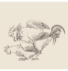 Mating of a rooster and hen vector image