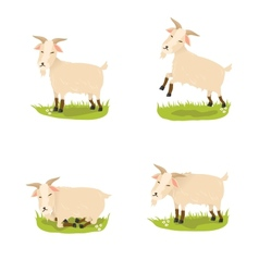 Set of cute goats vector image