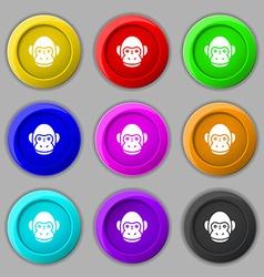 Monkey icon sign symbol on nine round colourful vector image
