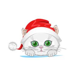 cat in hat vector image