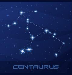 Constellation centaurus centaur night star sky vector