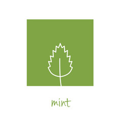Mint icon on green square vector