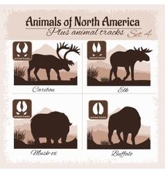 North America animals and animal tracks vector