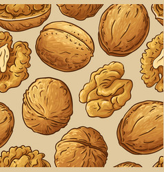 walnut nuts pattern on color background vector image