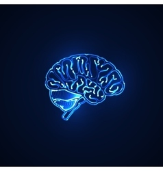 human brain neon sign vector image vector image