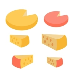 Set of Different Cheese Types Varieties of Pieces vector image