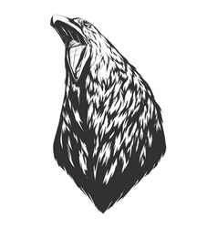 With crow head vector