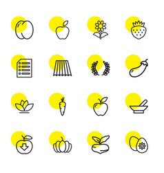 16 organic icons vector image