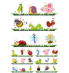 different types of insects on grass vector image