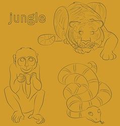 monkey tiger snake vector image