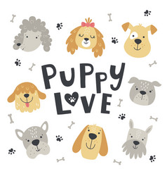 puppy love cute set dog heads vector image