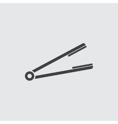 Hair straightener icon vector image