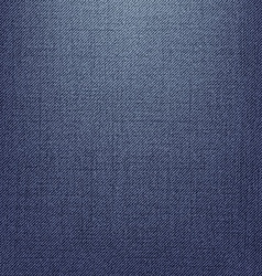 Jeans Texture Version 2 vector image vector image